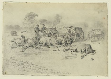 Edwin Forbes drawing of the devastation of the battle of Gettysburg is particularly striking.